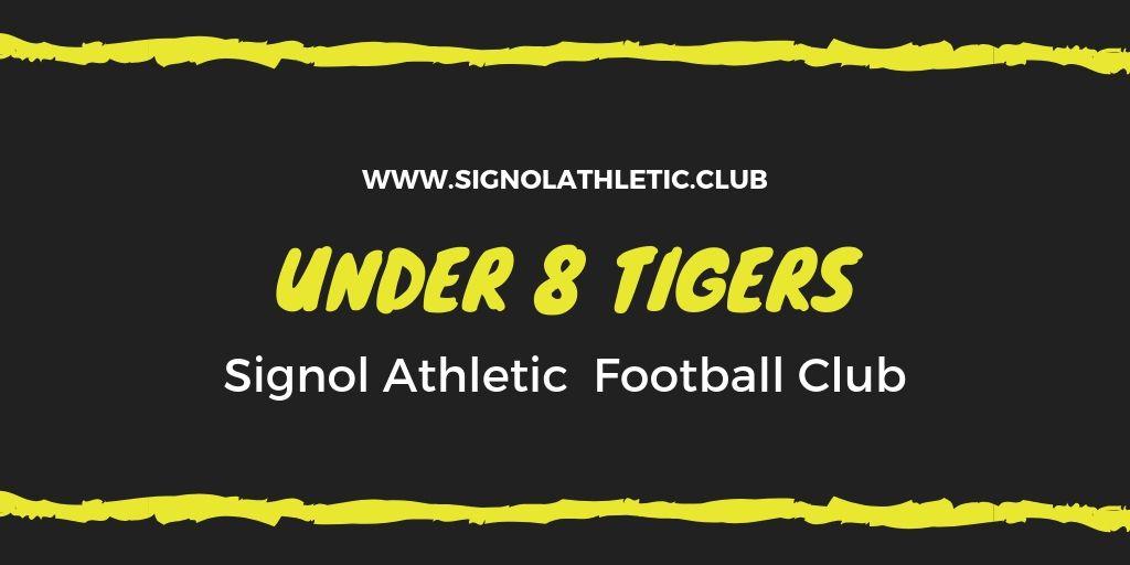 Signol Under 8 Tigers
