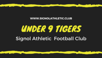 Under 9 Tigers