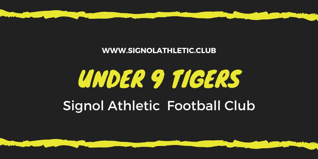 Under 9 Tigers 2020 – 2021 Season