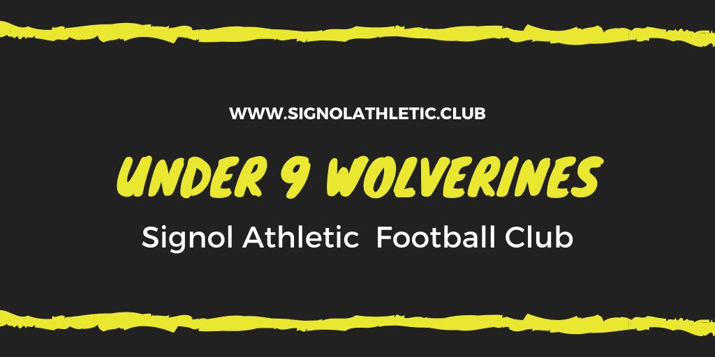 Under 9 Wolverines 2020 – 2021 Season